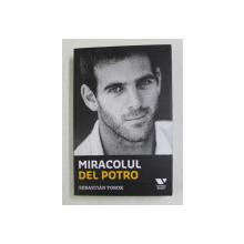 MIRACOLUL  DEL POTRO de SEBASTIAN TOROK , 2019