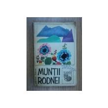 MUNTII RODNEI-EMILIAN ILIESCU  1968