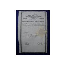Muscel, Departamentul Vistieriei Patent negustor Dicu Stanciu 1846