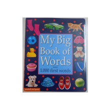 MY BIG BOOK OF WORDS OVER 1000 FIRST WORDS , 2009