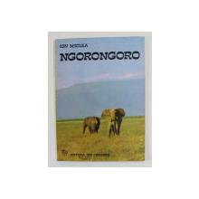 NGORONGORO de ION MICLEA , UN ALBUM CU ANIMALE SALBATICE DIN CA MAI MARE REZERVATIE A LUMII , 1974