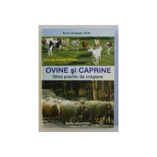 OVINE SI CAPRINE , GHID PRACTIC DE CRESTERE de SORIN OCTAVIAN VOIA , 2005