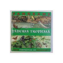 PADUREA TROPICALA - SERIA ' PANORAME ' de JULIA BRUCE ...NICHOLAS HARRIS , 2007