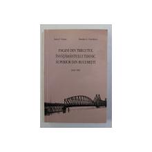 PAGINI DIN TRECUTUL INVATAMANTULUI TEHNIC SUPERIOR DIN BUCURESTI de RADU P. VOINEA si DUMITRU C. VOICULESCU , 1818 -1981 , APARUTA 2004