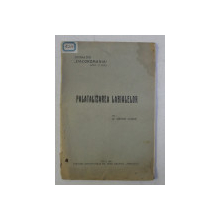 PALATIZAREA LABIALELOR de W.MEYER LUBKE , 1922