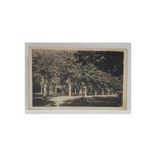 PARCUL REGELE CAROL AL II - LEA , BRAILA , CARTE POSTALA , 1947
