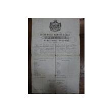 Pasaport Carol I 1872