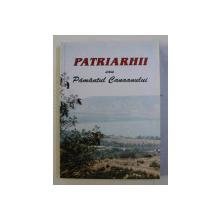 PATRIARHII SAU PAMANTUL CANAANULUI - PARTEA INTAIA , 2002