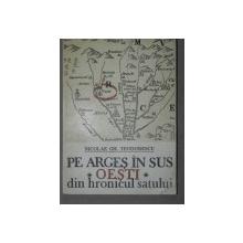 PE ARGES IN SUS.OESTI.DIN HRONICUL SATULUI - NICOLAE GH. TEODORESCU  BUCURESTI 1988