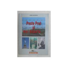 PESTE PRUT SI MAI DEPARTE ...de DORU CIUCESCU , 2007