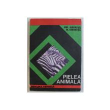 PIELEA ANIMALA de GH. CHIRITA si M . CHIRITA , 1993
