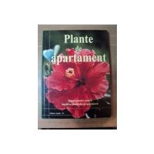 PLANTE DE APARTAMENT de JANE COURTIER , 2001