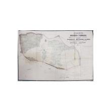 PLANUL MOSIEI TUNARI , JUDETUL ILFOV , 1850