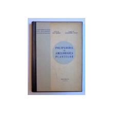 POLIPLOIDIA IN AMELIORAREA PLANTELOR de ION ANGHEL si ALEXANDRU IGNAT , 1974