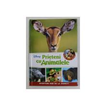 PRIETENI CU ANIMALELE - ANTILOPE IMPALA , ELEFANTI , URS BUZAT  , 2017