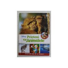 PRIETENI CU ANIMALELE -FAMILII DE BABUINI , RATE SALBATICE , BALENA CU COCOASA , 2017