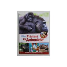 PRIETENI CU ANIMALELE - PUII DE GORILA , URSUL CU OCHELARI , PUMA  , 2017