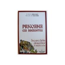 PRIGOANA CEA DINAUNTRU  - INCERCARILE DREPTILOR IN BISERICA LOR de MIHAI VALICA si PAVEL CHIRILA , 2011
