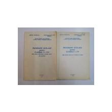 PROGRAME SCOLARE PENTRU CLASELE I - IV / V - VII , VOL I - II , 1993
