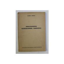 PROTOPOPUL BARTOLOMEU BAIULESCU de CANDID C. MUSLEA , 1936