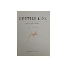 REPTILE LIFE by ZDENEK VOGEL , ANII '60
