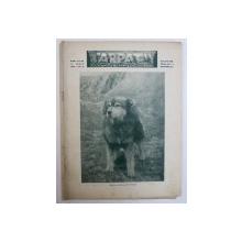 "REVISTA "" CARPATII "" - VANATOARE , PESCUIT , CHINOLOGIE , ANUL V - LEA , NO . 6 , 15 IUNIE , 1937"