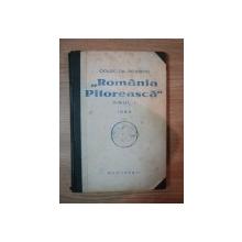 REVISTA''ROMANIA PITOREASCA''  1933 ANUL I NR. 1-7