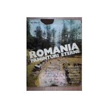 ROMANIA.PAMINTURI ETERNE-ION MICLEA  1980
