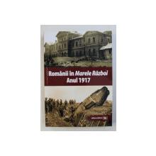 ROMANII IN MARELE RAZBOI ANUL 1917 : DOCUMENTE , IMPRESII , MARTURII de MIHAIL E. IONESCU , 2018