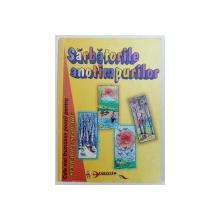 SARBATORILE ANOTIMPURILOR de MARCELA PENES, NICU PLOSCARIU , 1998