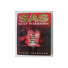 SAS GULF WARRIORS - THE STORY BEHIND BRAVO TWO ZERO by STEVE CRAWFORD , 1995