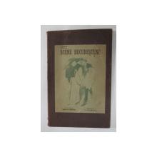 SCENE BUCURESTENE de VERO ,  ilustratiuni de N. VERMONT , 1919 , DEDICATIE*