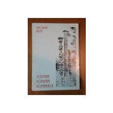 SCULPTURA POPULARA ROMANEASCA de GHEORGHE ALDEA , 1996