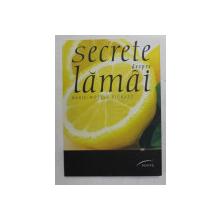 SECRETE DESPRE LAMAI de MARIE - NOELLE PICHARD , 2012