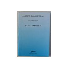 SOCIOLOGIA MUNCII de HOFFMAN OSCAR , 1996