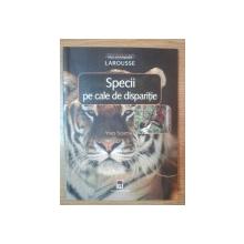 SPECII PE CALE DE DISPARITIE de YVES SCIAMA , 2003