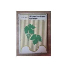 TAIEREA SI CONDUCEREA VITEI DE VIE de D. D. OPREA , Bucuresti 1978