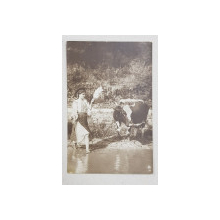 TARANCA CU CAIERUL LA RAU , COLECTIA A . BELLU , FOTOGRAFIE TIP CARTE POSTALA , MONOCROMA , CIRCULATA , 1923