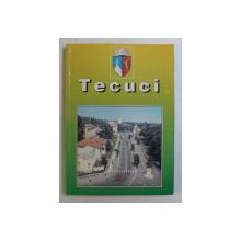 TECUCI , EVENIMENTE MONUMENTE , INSTITUTII , PERSONALITATI , PUBLICATII , GHID de STEFAN ANDRONACHE , 2001