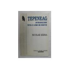 TEPENEAG - INTRODUCERE INTR- O LUME DE HARTIE de NICOLAE BARNA , 1998