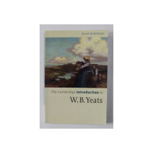 THE CAMBRIDGE INTRODUCTION TO W.B. YEATS by DAVID HOLDEMAN , 2006