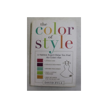 THE COLOR OF THE STYLE by DAVID ZYLA , 2009