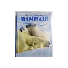 THE ENCYCLOPEDIA OF MAMMALS , 1999