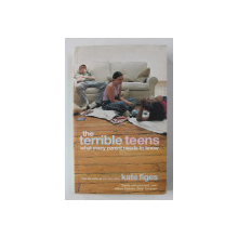 THE TERRIBLE TEENS: WHAT EVERY PARENT NEEDS TO KNOW by KATE FIGES , 2002