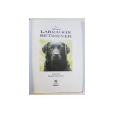 THE ULTIMATE LABRADOR RETRIEVER by HEATHER WILES FONE , 1997