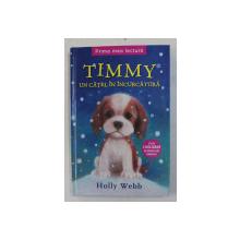 TIMMY , UN CATEL IN INCURCATURA DE HOLLY WEBB , 2016
