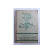 TRIBUNA BANATULUI - REVISTA POLITICA , SOCIALA SI ECONOMICA , ANUL IV , SERIA II , NR. 1-2 , 15 FEBRUARIE  1929
