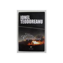 ULITA COPILARIEI de IONEL TEODOREANU , ANII '90