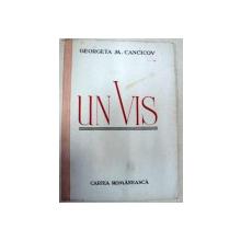 UN VIS - GEORGETA M. CANCICOV
