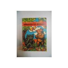 URSULETII LUI RADUNA de N. RADULESCU - LEMNARU , 1973 , COPERTA SI ILUSTRATII de ION PANAITESCU